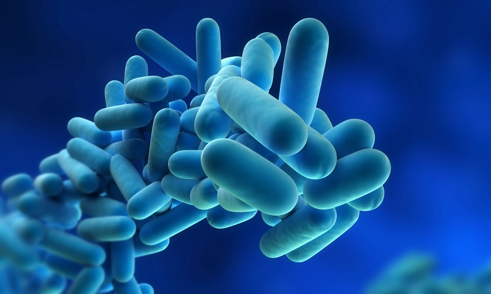 Serbatoio delle acque chiare: sanificazione e pulizia