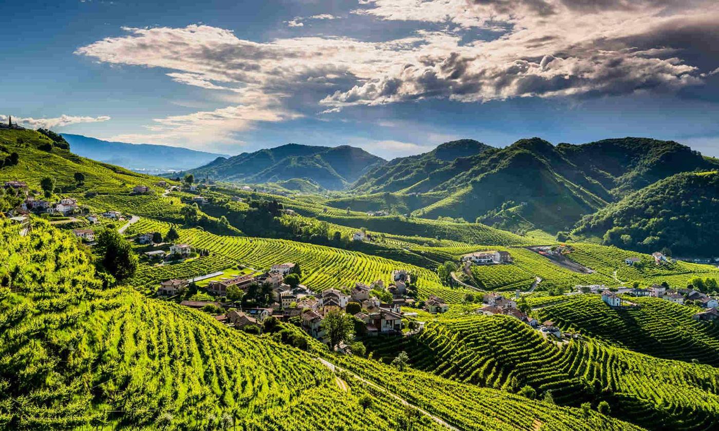 Mete in camper: Valdobbiadene, alla scoperta del vino Cartizze
