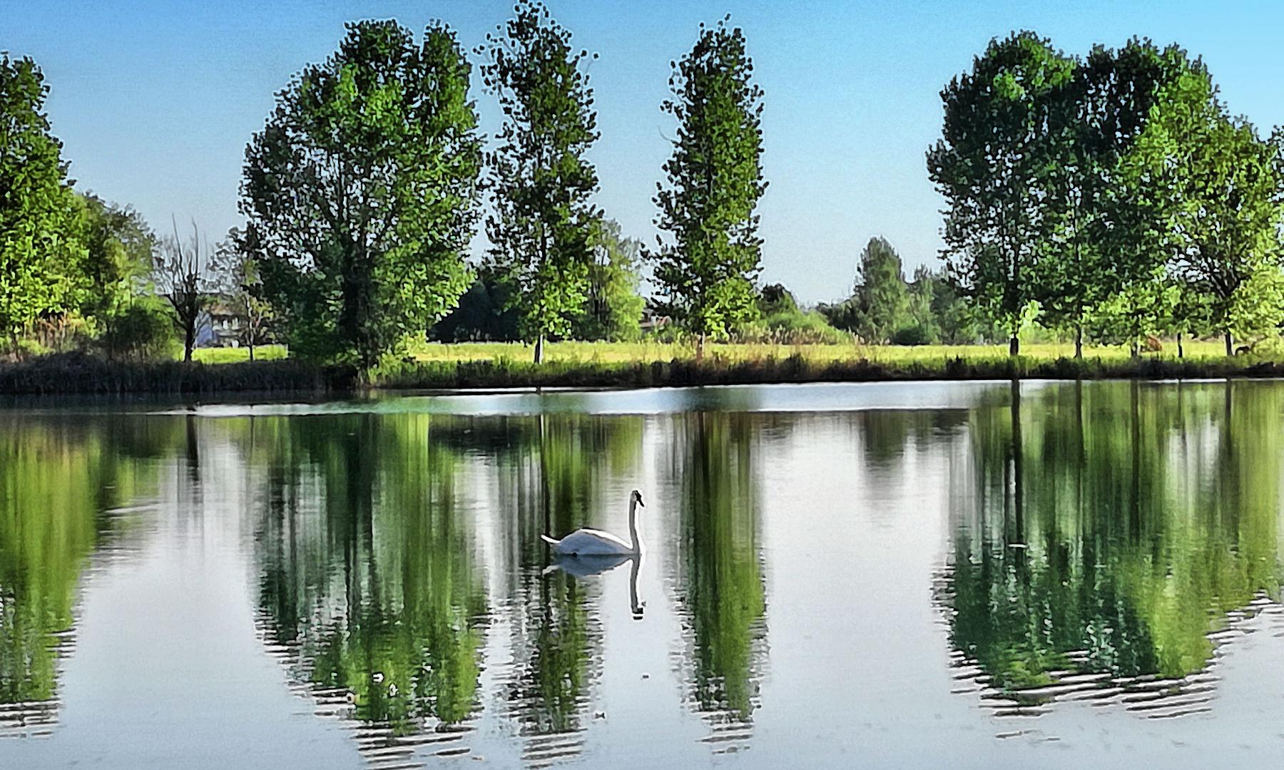 Treviso in camper - Lago area camper Tor di Quinto