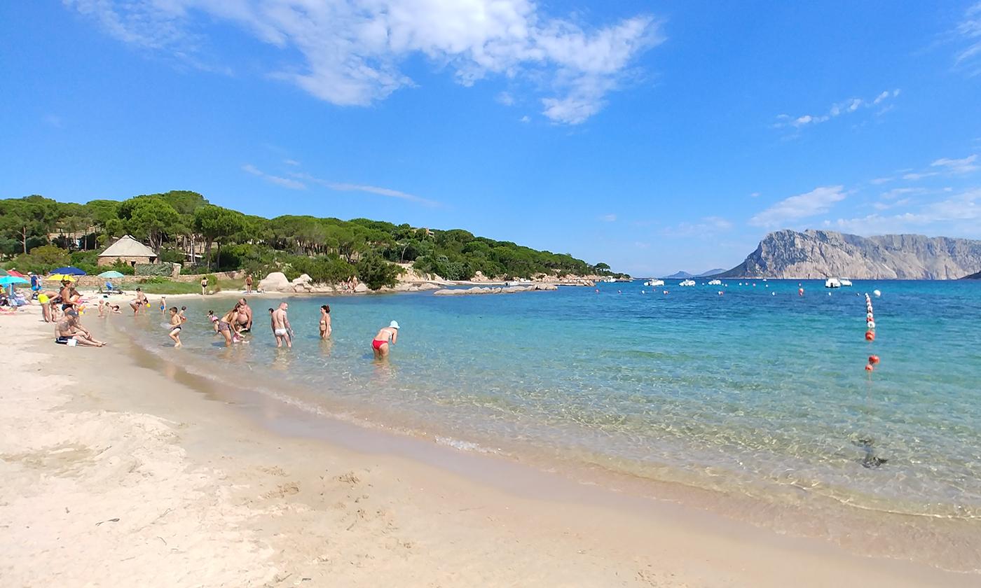 Sardegna 2018: Cala Suaraccia, San Teodoro (OT)