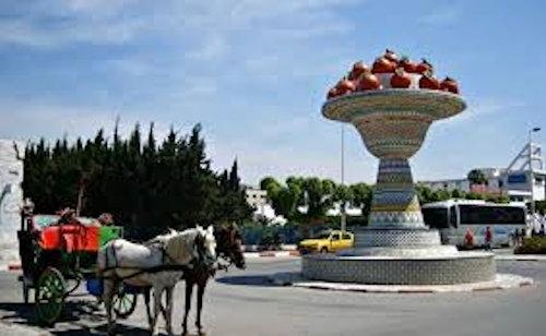 Viaggio in Tunisia 7 giorno