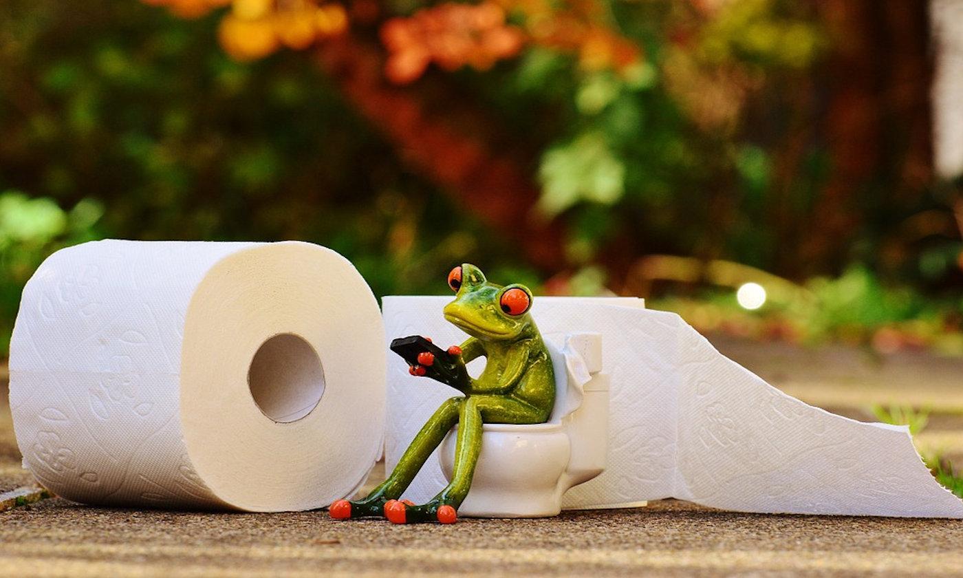 Quale carta igienica in camper e roulotte?