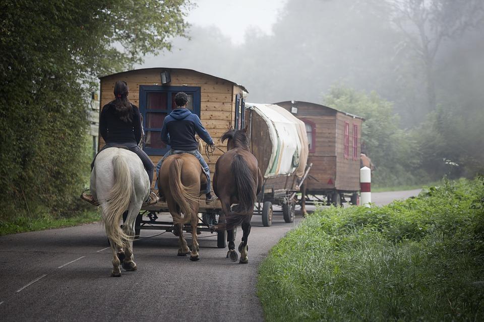 Noi viaggiatori in scatola