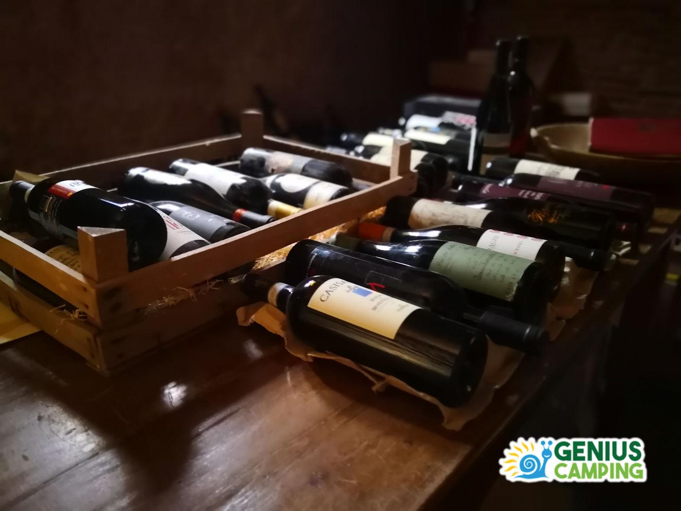 Cosa vedere in Valpolicella - Vino