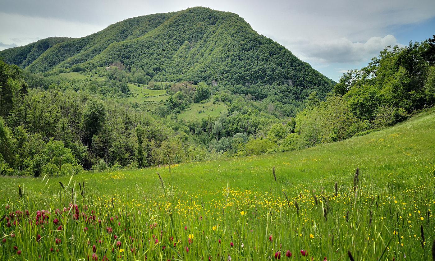 Parco storico di Monte Sole - Natura